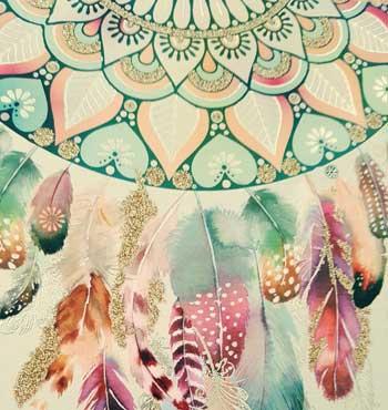 Bild: Edler Traunfänger in bunten Farben